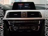 BMW 318 D Business Advantage AUT EU6